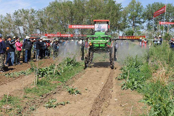 青海省举办藜麦枸杞全程机械化现场技术实训活动