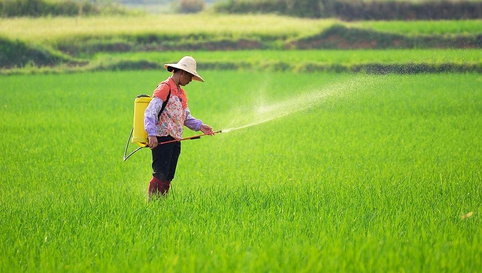 青海超三分之一耕地实施化肥农药减量增效